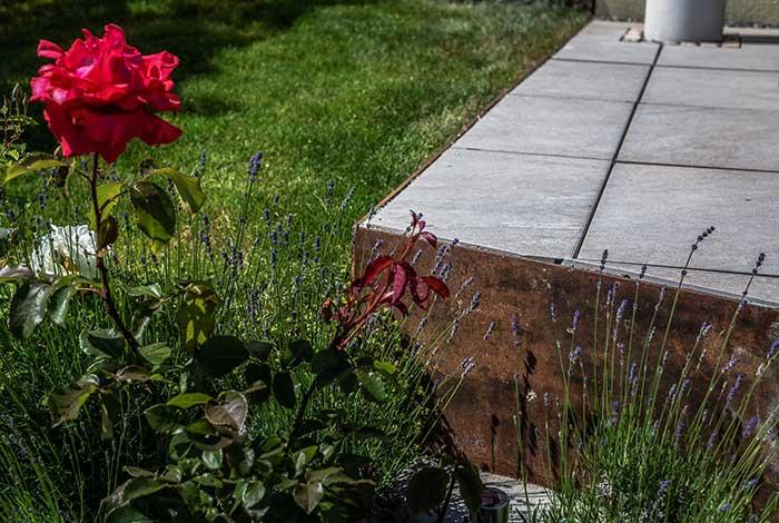 Beetpflege - Höri Gartenbau - Wangen