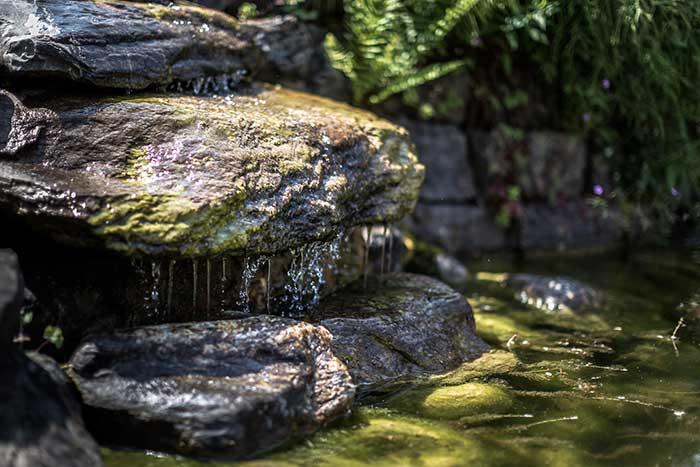 Brunnen - Höri Gartenbau - Wangen
